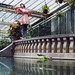 greenhouse-dancing by laura zalenga