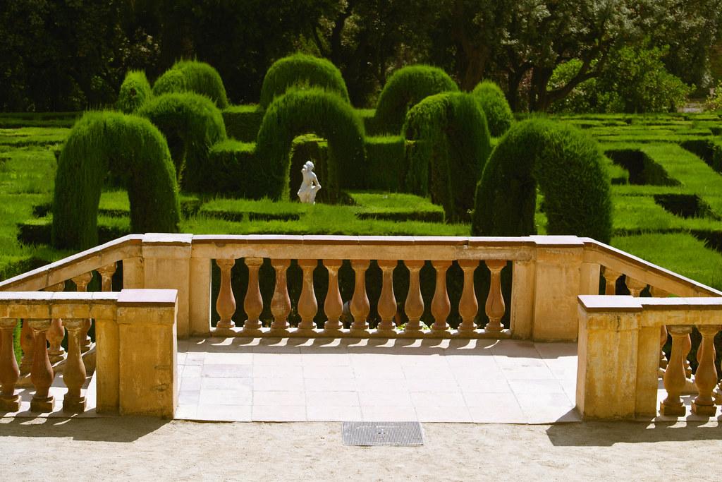laberinto de arbustos