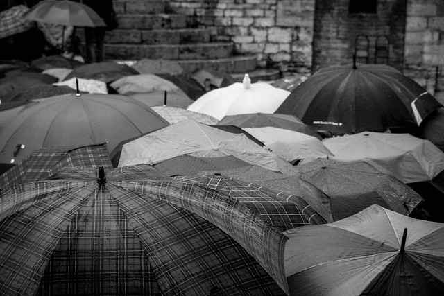 Umbrellas in the Rain - Perugia, Italy