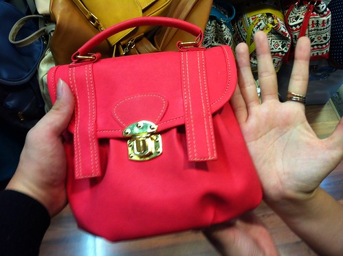 Bag Lady 7