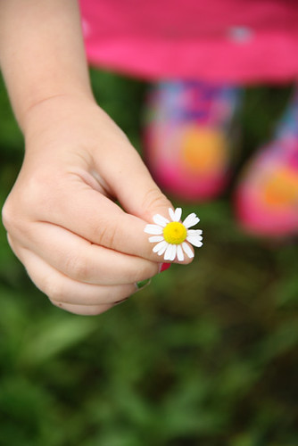 Auttie_holdn-daisy-so-beautiful