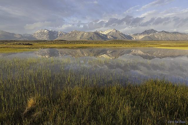 Alkali Pond Near Benton Crossing Road - Eastern Sierra