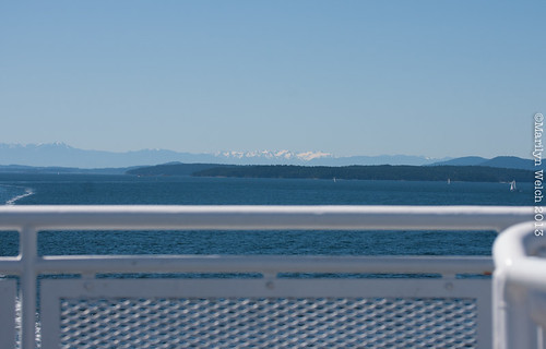 On the 11:00 am ferry