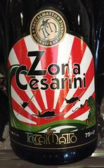 Zona Cesarini