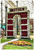 2015  Republic Day Flower Show, Bangalore Lal Bagh