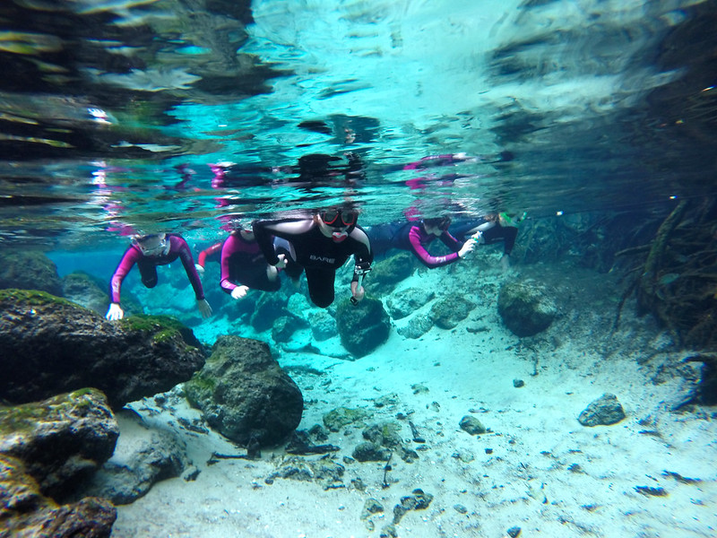Swimming at Three Sisters Springs