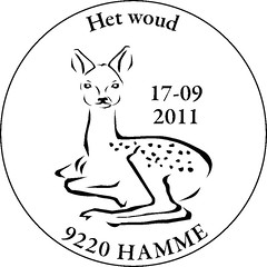 20 HAMME vect