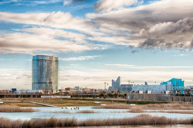 Crecica Ebro Enero 2015-18