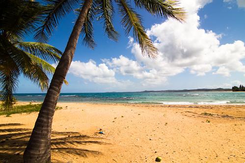 beach puerto playa rico luquillo