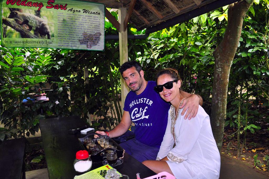 Degustación de cafés de Bali Kopi Luwak, el café más caro del mundo - 16627269418 ed485e5a81 b - Kopi Luwak, el café más caro del mundo