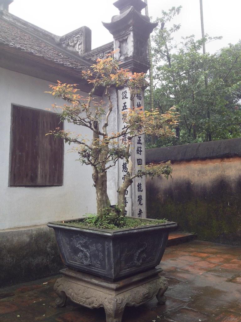 Bo Da Pagoda (31)