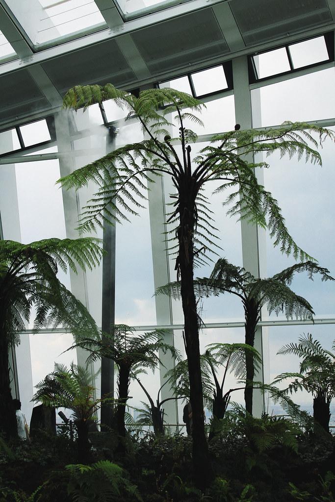 Sky Garden trees