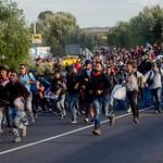 Wed, 05/04/2016 - 06:50 - migrants 2