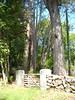 rockcliffe gate