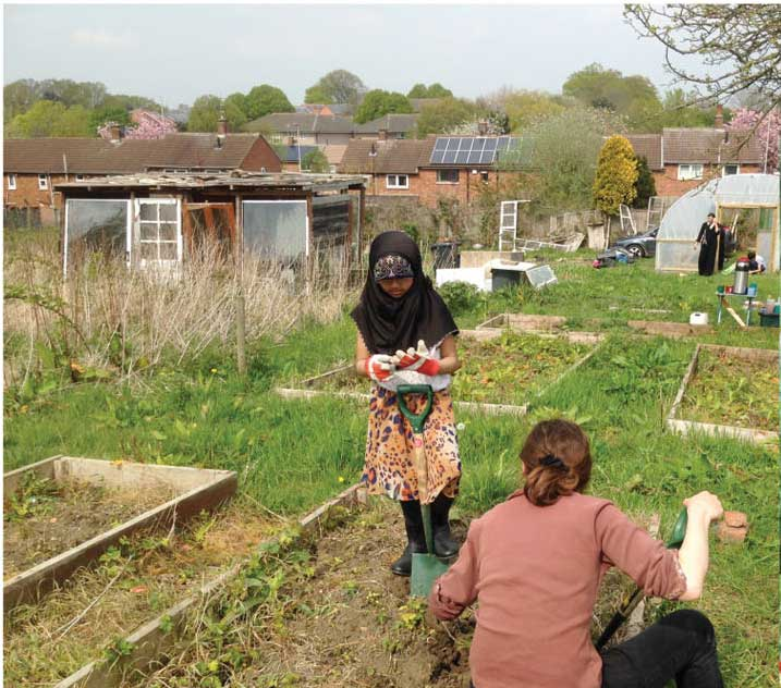 Community-allotment1