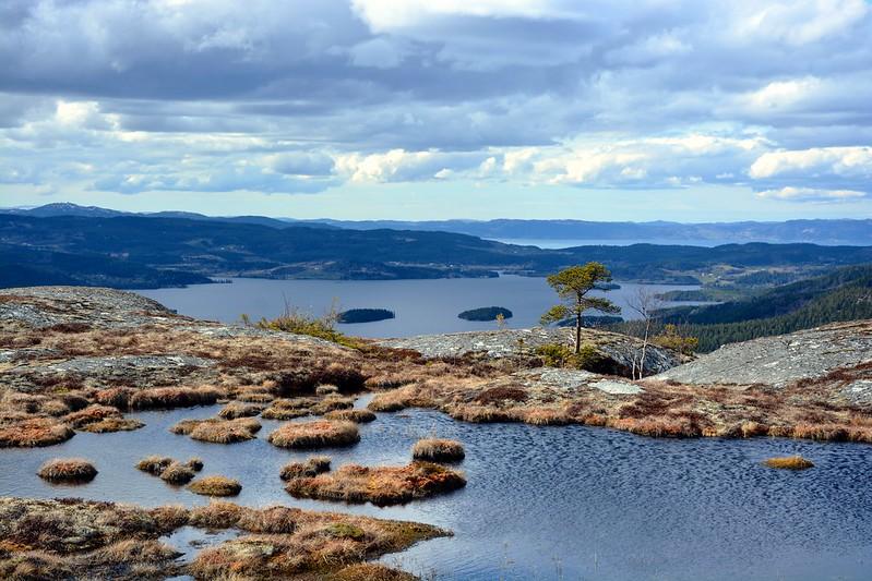 Jonsvatnet og en liten dam på Jervfjellet
