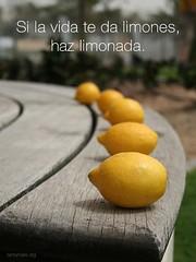 si_la_vida_te_da_limones