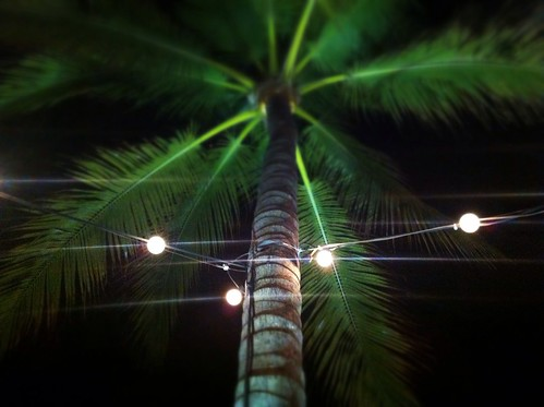 Bahama nights by Fotosia