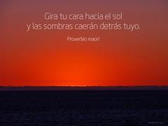 gira_tu_cara