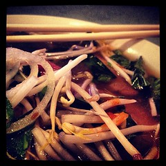 This was so totally, awesomely, exactly what I needed right now. #pho