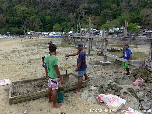 The people constructing the bridge to Yaposan Beach in El Nido, Palawan