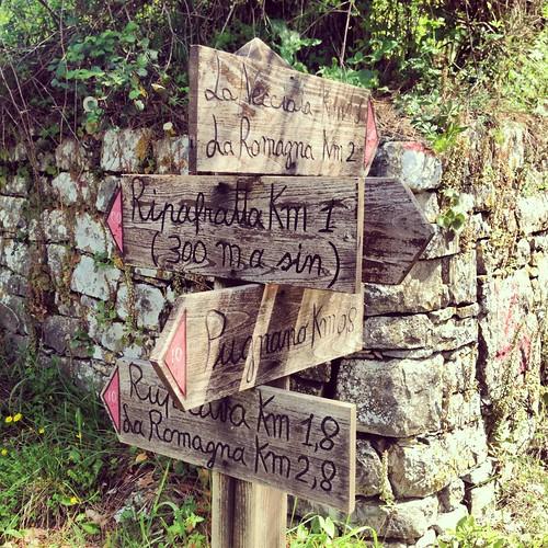 escursione Monte Pisano
