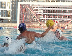 swimmer(0.0), water & ball sports(1.0), water polo(1.0), swimming(1.0), sports(1.0), recreation(1.0), outdoor recreation(1.0), leisure(1.0), team sport(1.0), water sport(1.0), ball game(1.0),