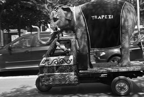 Aquellos chalados en sus locos cacharros. by JoanOtazu