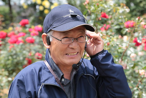 与野公園のバラ 2013