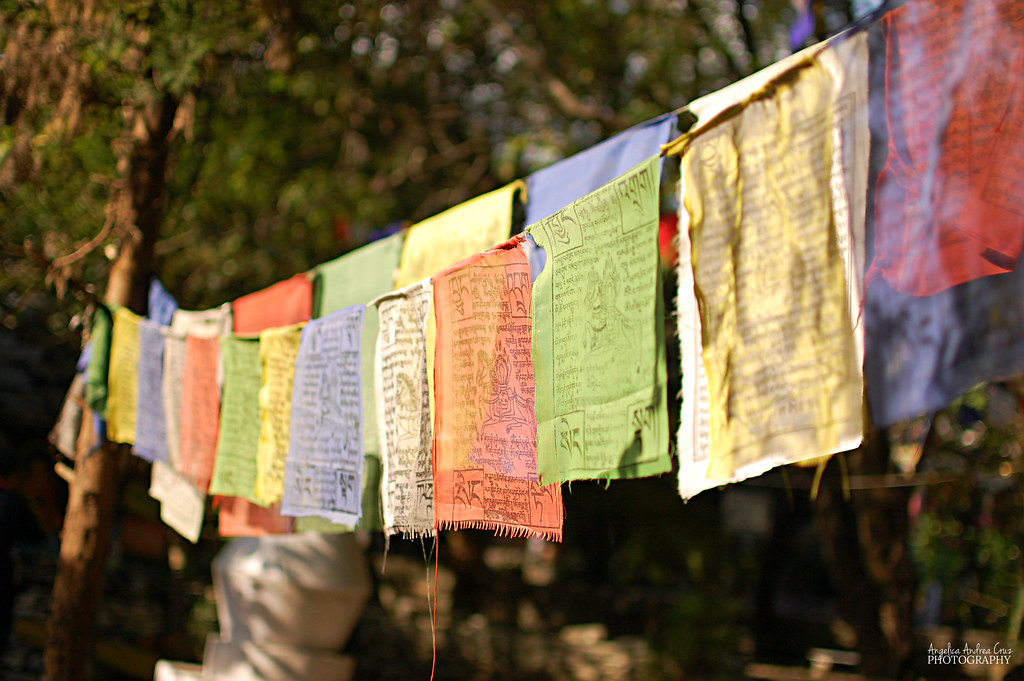 Tibetan Prayer Flags in Dharamsala