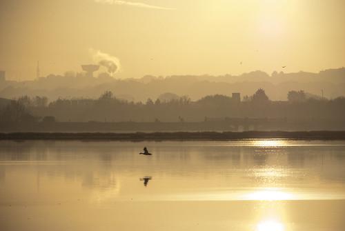 uk bridge sea england reflection bird water silhouette sunrise dawn bay pentax may dorset pooleharbour hamworthy holesbay k10d grahamhobbs