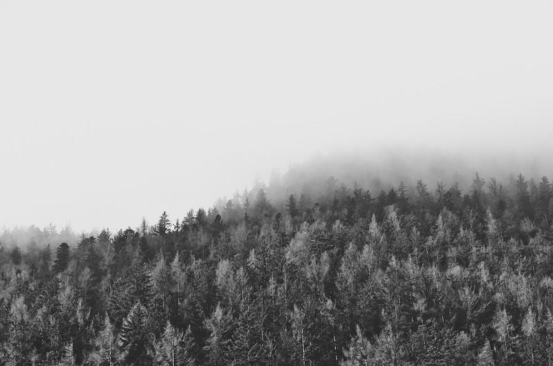 dark and grey