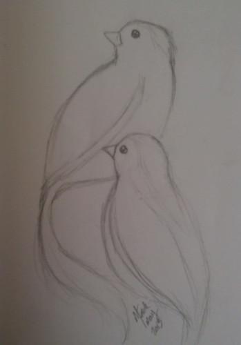 Birds-sketch