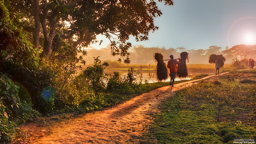 sunset people landscape lifestyle bangladesh bangla
