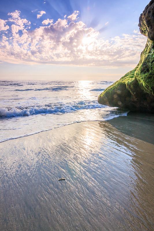 Pearl St Beach-9758
