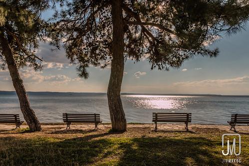 park sea sun tree bench landscape greece macedonia thessaloniki timeless makedonia kalamaria μακεδονια makedoniathraki