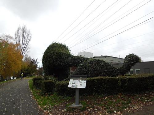 Seattle Trip Nov 14 (16)