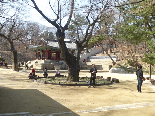 Co-Seoul-Palais-Changdeokgung-Jardin secret (12)