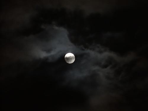 Ein Mond, ein Mensch, ein Urlaub, ein Haus, überall sind die Lichter aus, Zimmern, Küche, Bad, Abort, sperrt er ab, fährt heiter fort nach Tirol vor Schreck und ist weg im Wahn nicht getan der Mensch sieht, schaudervoll, im Geist, wie man gestohlen schon das meiste, sieht Türen offen, angelweit 0002