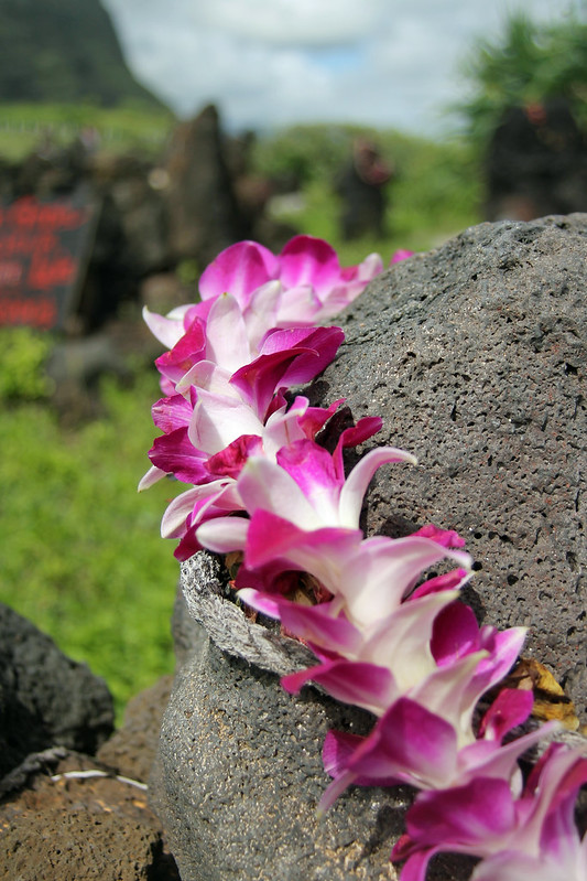lei on rock