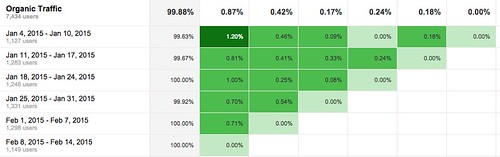 Cohort_Analysis_-_Google_Analytics 6.jpg