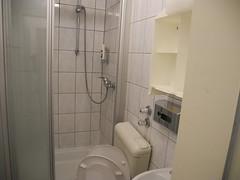 Франкфурт душ