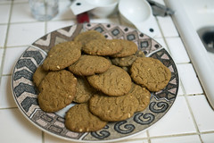 Peanut butter cookies ready for consumption