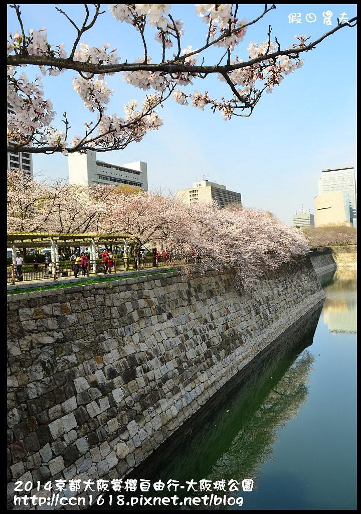 2014京都大阪賞櫻自由行-大阪城公園DSC_1742