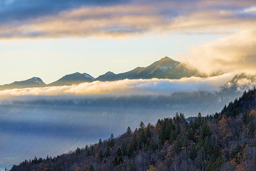 mountains fog clouds forest landscape switzerland nikon bern d800 colrful hasliberg