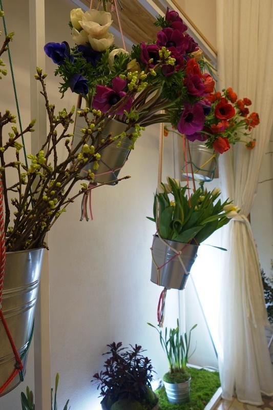 květiny v Kurator Praha