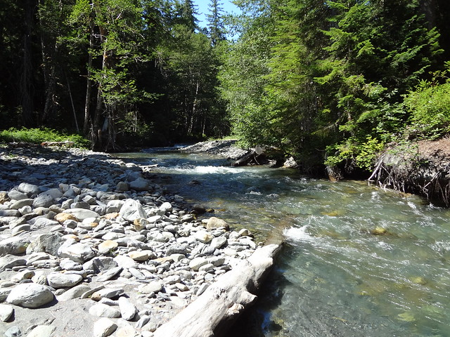 Elwha River At Chicago Camp