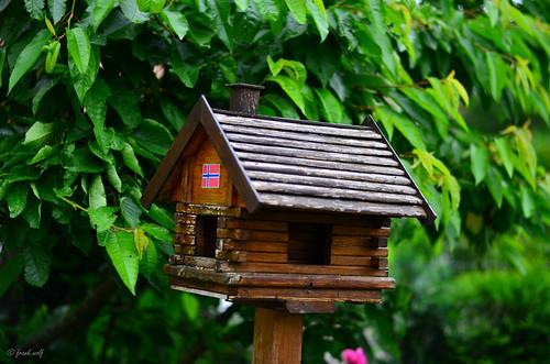 Das Vogelhaus