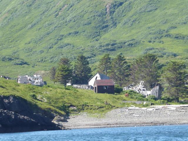 Unga village 2
