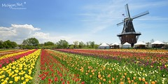 Windmill Island - Holland, Michigan by Michigan Nut